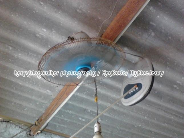 IMG_20121206_124149